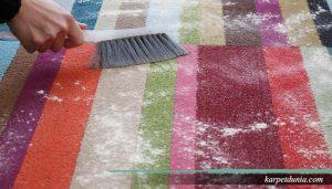 Cara cepat membersihkan karpet