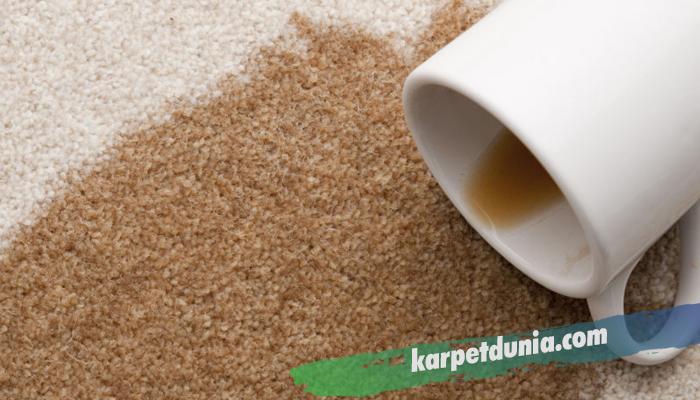 Cara Membersihkan Karpet dari Segala Noda
