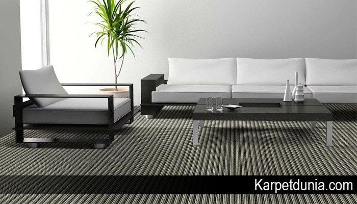 Karpet Bulu yang Paling Pas untuk Rumah