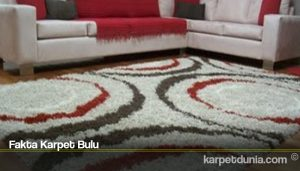 Fakta Karpet Bulu