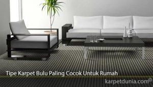 Tipe Karpet Bulu Paling Cocok Untuk Rumah
