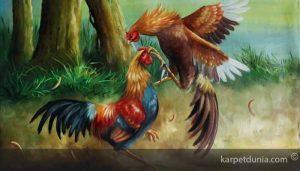 Cara-Termudah-Meraih-Kemenangan-Di-Judi-Sabung-Ayam-Online