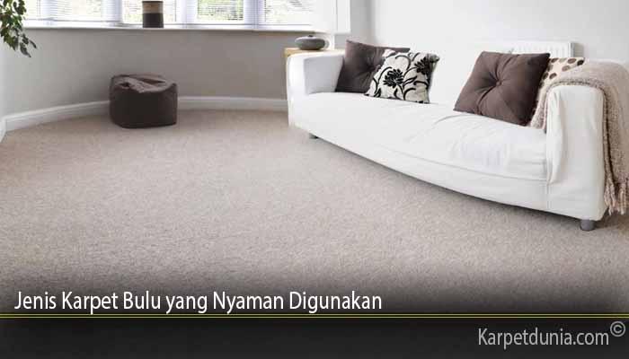 Jenis Karpet Bulu yang Nyaman Digunakan